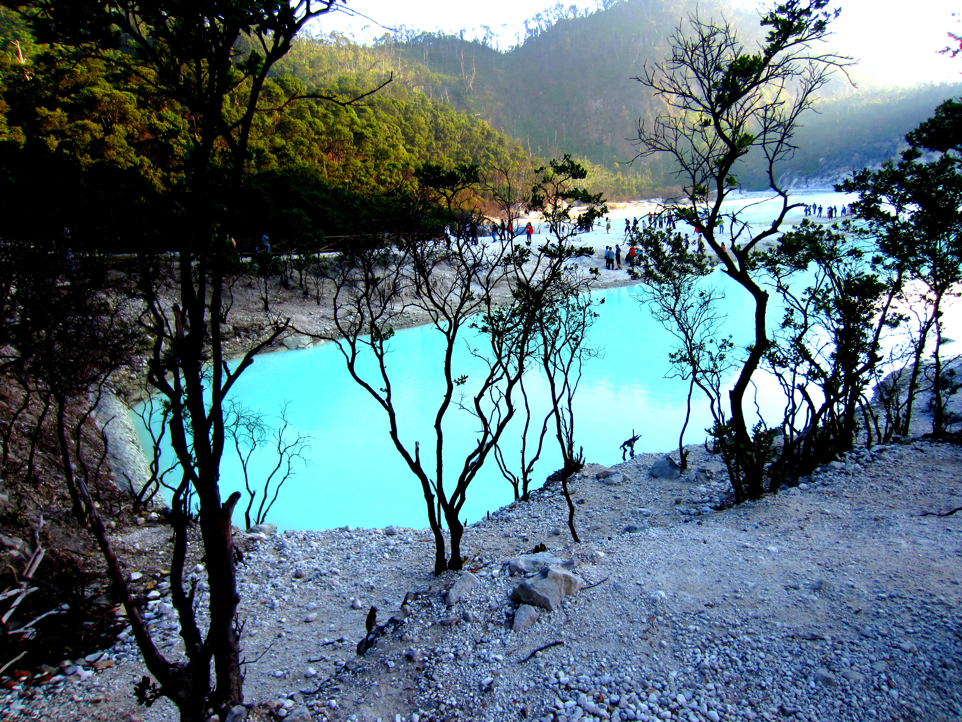 Backpacker Trip To Kawah Putih Not Just An Ordinary Trip Kawah Putih Rute Jakarta The Most Elegant  Kawah Putih Rute Jakarta